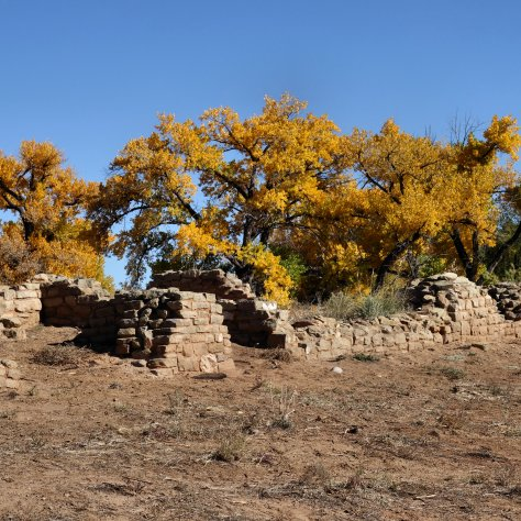 Aztec Ruins, autumn, cottonwood trees